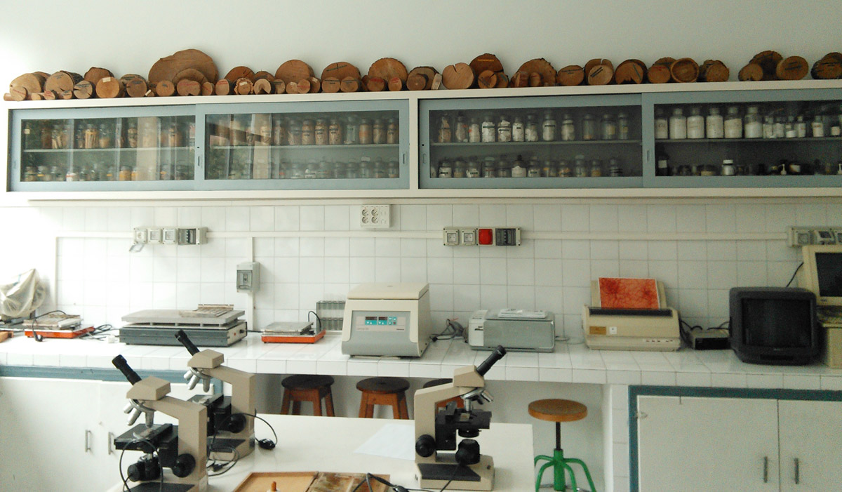 One side of the school's laboratory.