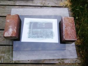 Cyanotype exposure in sunlight.
