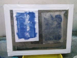 Rinsing two cyanotypes on a silkscreen for support; buckled paper flattened after drying by placing in a heat transfer press for 15 seconds.