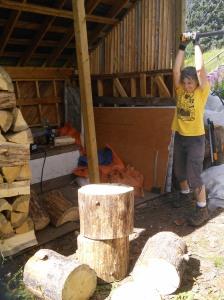Kathy wields the splitting maul. One whack did it!